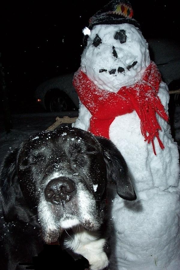 major, snowman, winter, travel, travelogue, ailsa prideaux-mooney