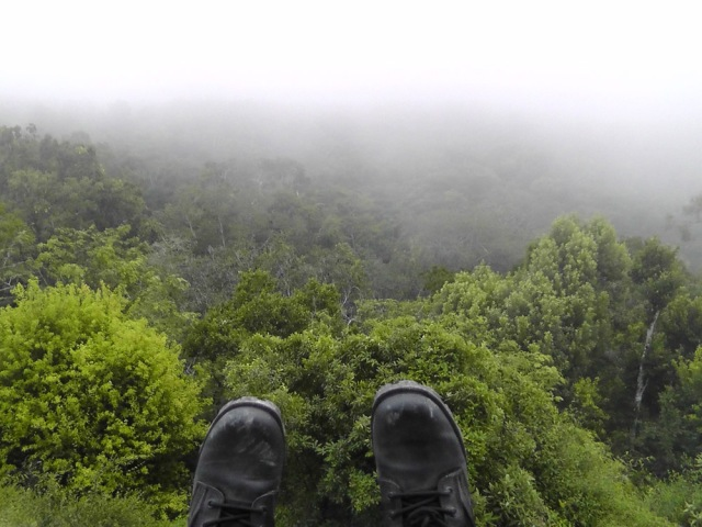 tikal, temple iv, guatemala, travel, travelogue, jungle boots, ailsa prideaux-mooney