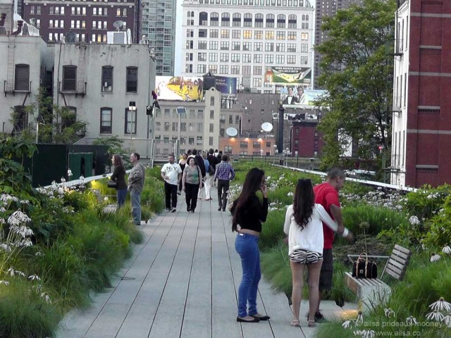 high line park new york piet oudolf