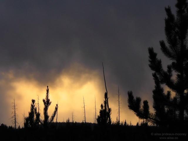 US road trip USA America montana wyoming yellowstone beartooth highway pass sunset