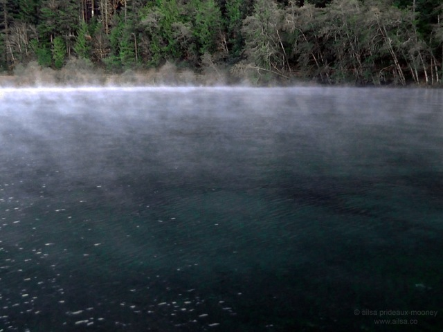 Freezing fog Lake Crescent olympic penninsula washington national park usa us america