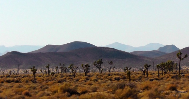 heat-mohave-desert