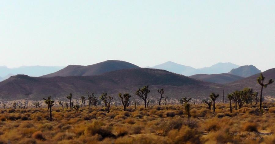 mohave desert california heat hot usa summer us america road trip