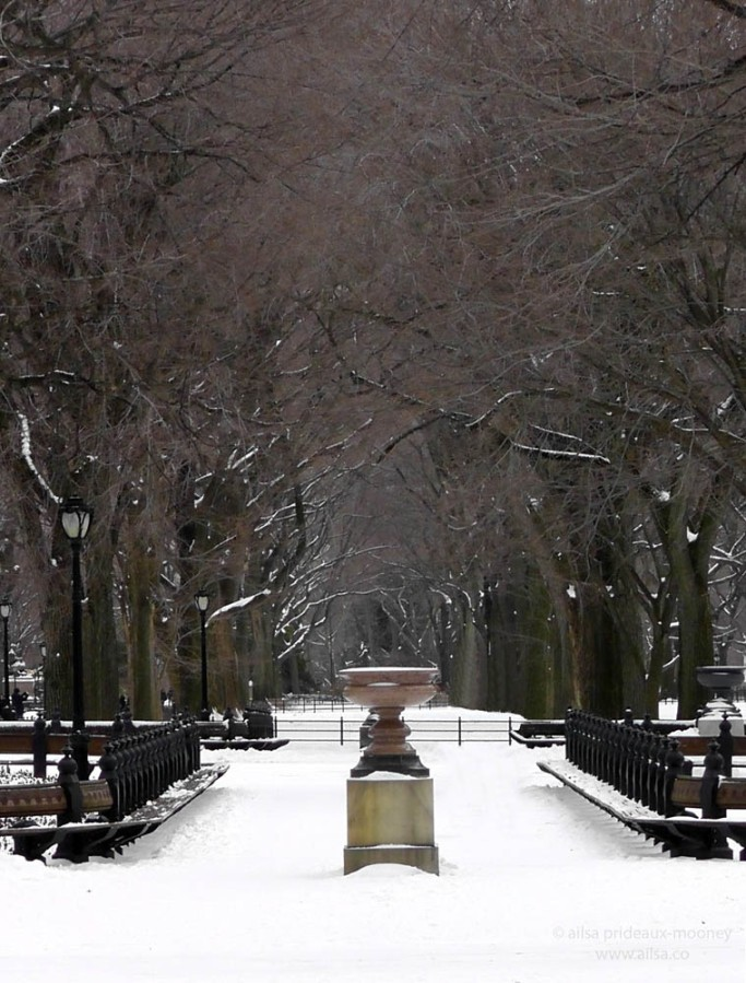 central park snow new york winter manhattan