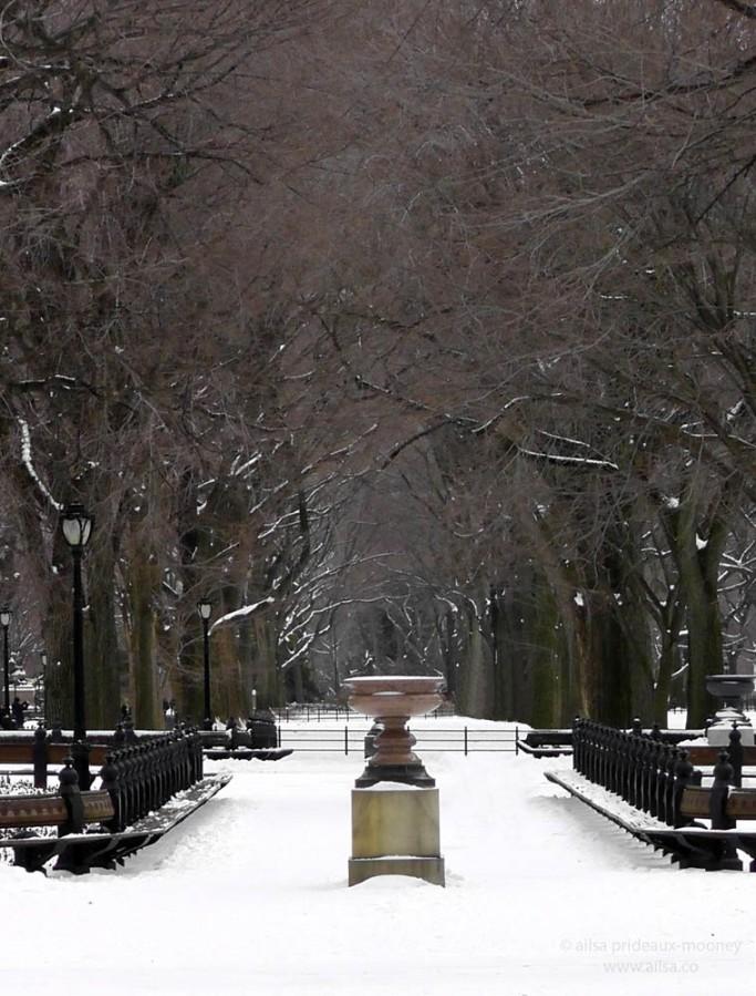 central park snow new york winter manhattan