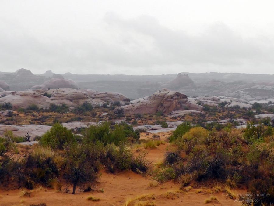 petrified sand dunes arches utah moab us usa america road trip national park