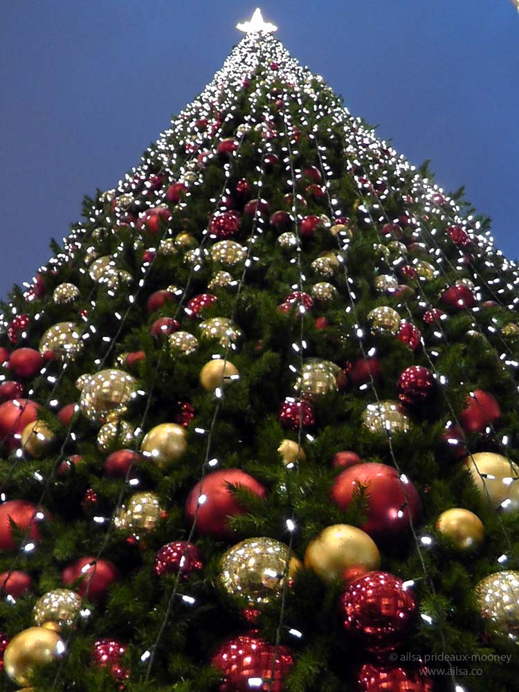 Images Of Seattle Christmas Tree Pickup Best Christmas