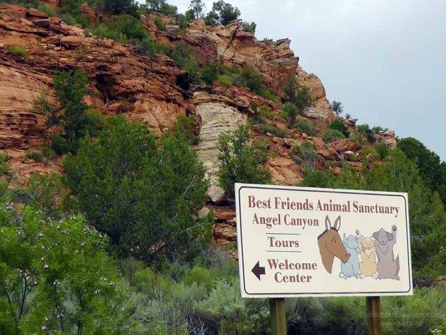 best friends animal society kanab utah sanctuary road trip