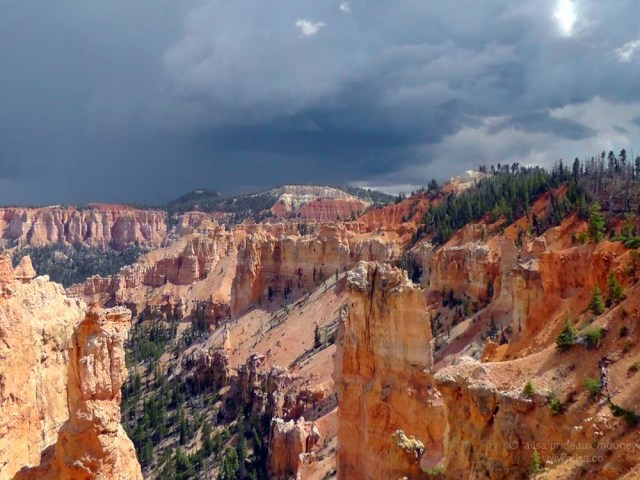 bryce pink hoodoos hoodoo canyon national park utah road trip rainbow point road trip