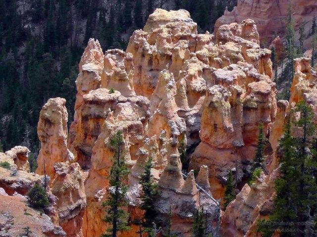 bryce pink hoodoos hoodoo canyon national park utah road trip