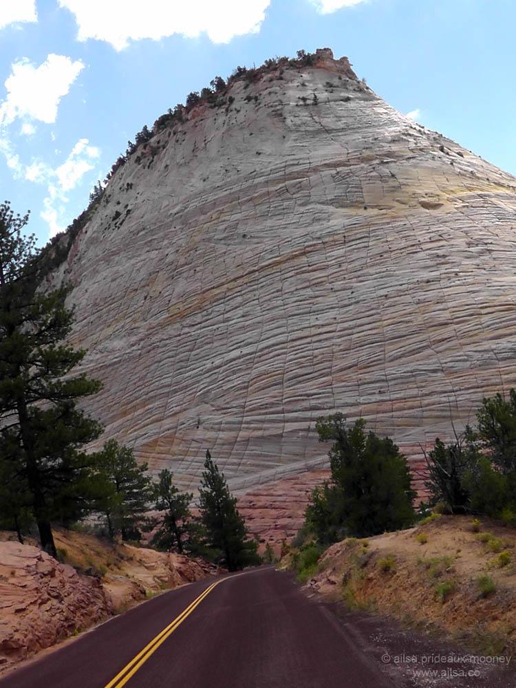 Checkerboard Mesa Zion National Park Utah Navajo Sandstone Us Road Trip Usa America Driving