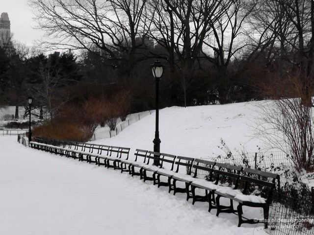 snow bench new york central park us usa america travel