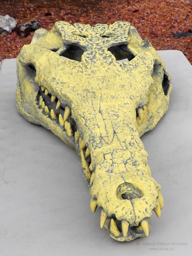 utah-croc