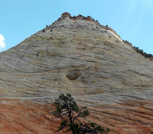 checkerboard mesa zion national park utah navajo sandstone us road trip usa america driving
