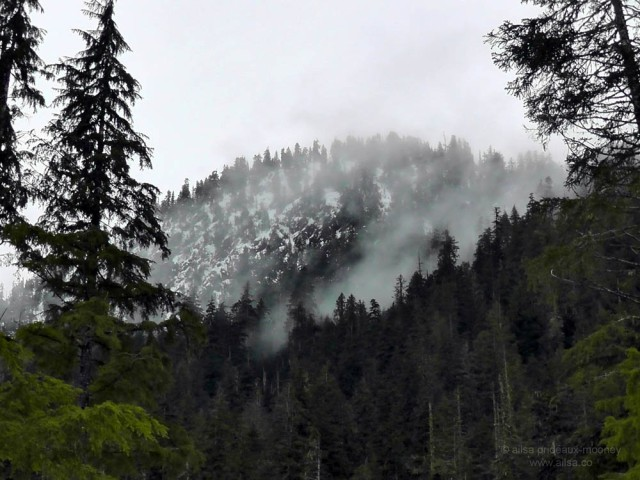 big four mountain washington ice caves  travel