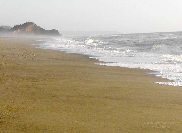 california coast road trip travel us usa america beach ocean