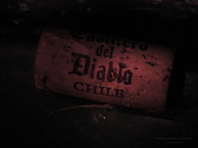 casillo del diablo wine chilean