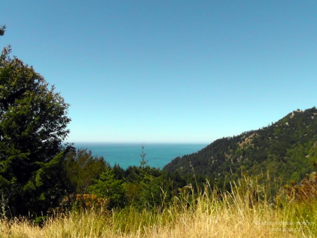 lost coast shelter cove california us usa america road trip driving black sand beach