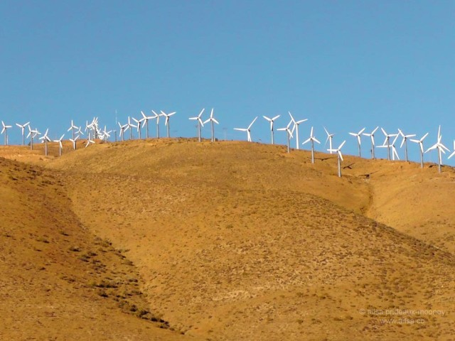 mojave tehachapi pass windfarm desert california road trip us usa america driving travel