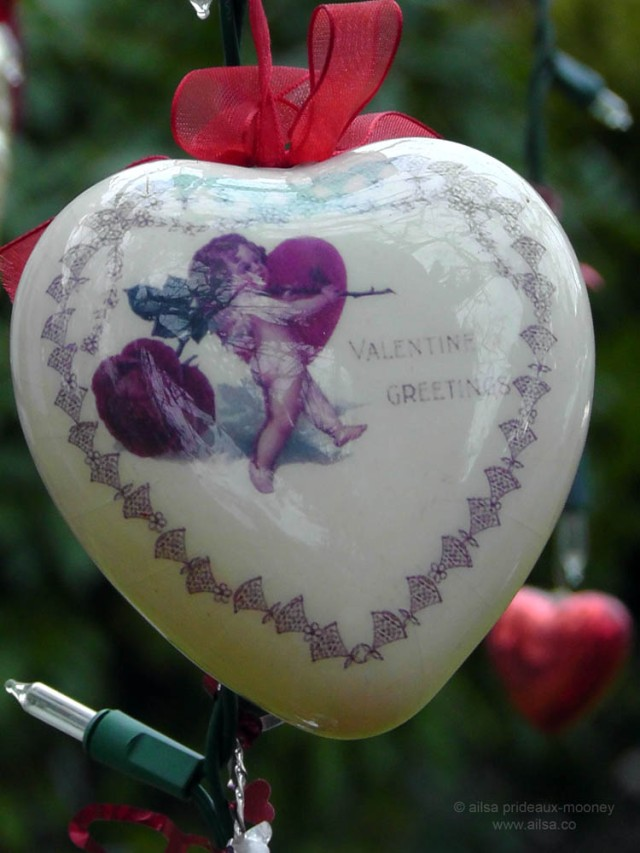 seattle washington valentine's day holiday tree phinney ridge