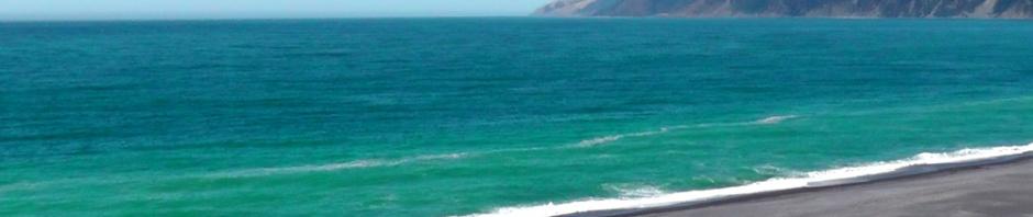lost coast, black sands, beach, california, travel, photography, ailsa prideaux-mooney, travelogue