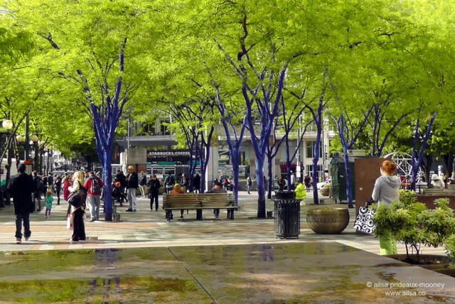 blue trees, westlake center, seattle, Konstantin Dimopoulos, travel, art, photography, ailsa prideaux-mooney, travelogue