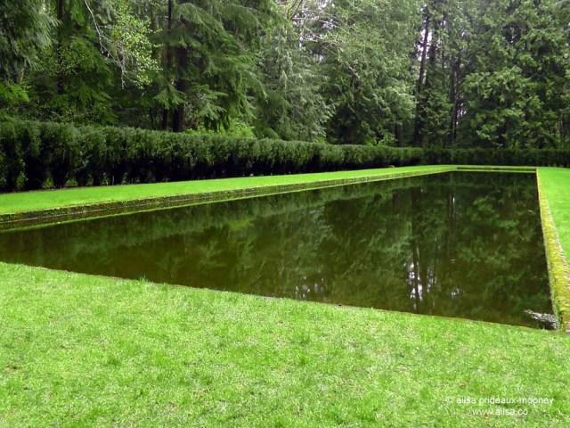 bloedel reserve, seattle, bainbridge island, garden, gardens, rain, travel, travelogue, ailsa prideaux-mooney, reflecting pool