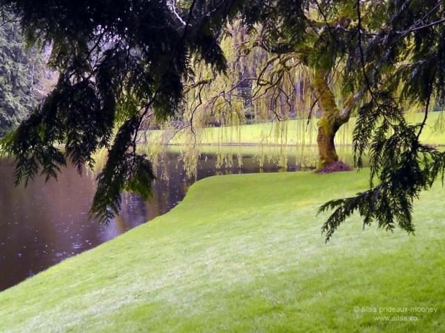 bloedel reserve, seattle, bainbridge island, garden, gardens, rain, travel, travelogue, ailsa prideaux-mooney