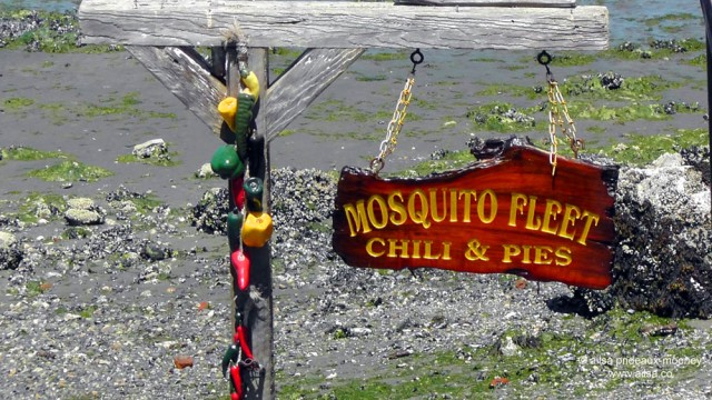 whidbey island, seattle, washington, travel, travelogue, ailsa prideaux-mooney, photography, mosquito fleet