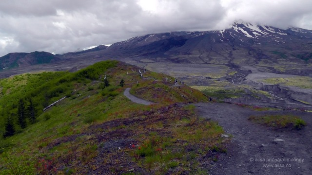 mount st helens, boundary trail, devils elbow, johnston ridge observatory, washington state, seattle, hiking, travel, travelogue, photography, ailsa prideaux-mooney