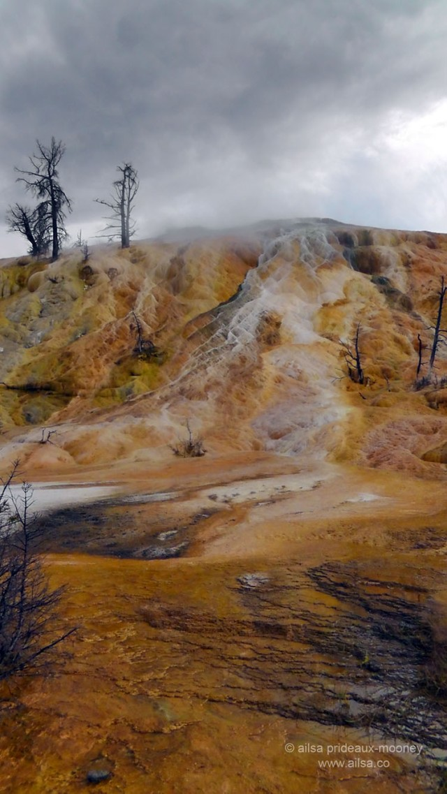 yellowstone national park, mammoth hot springs, wyoming, usa, america, road trip, travel, travelogue, photography, ailsa prideaux-mooney