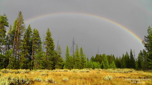 yellowstone national park, rainbow, wyoming, usa, america, road trip, travelogue, travel, photography, ailsa prideaux-mooney