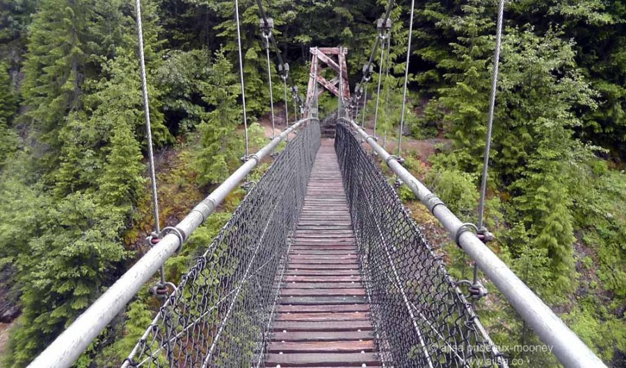 mount st helens, lava canyon, washington, hiking, travel, travelogue, photography, ailsa prideaux-mooney, suspension bridge
