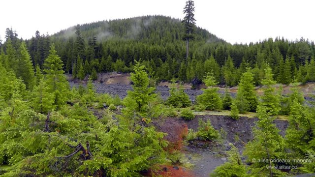 mount st helens, lava canyon, washington, hiking, travel, travelogue, photography, ailsa prideaux-mooney