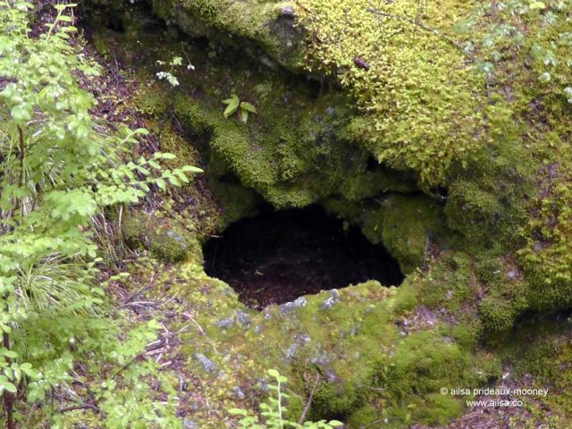 ape cave, mount st helens, washington, usa, travel, road trip, travelogue, photography, ailsa prideaux-mooney, volcano, lava tubes, trail of two forests