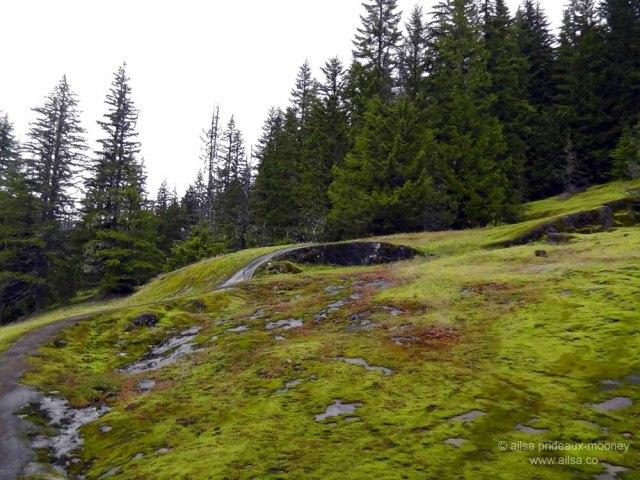 mount rainier national park, hiking, travel, photography, travelogue, ailsa prideaux-mooney, box canyon, cowlitz