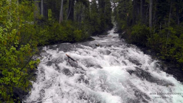 mount rainier, washington, volcano, north cascades, travel, travelogue, travel photography, ailsa prideaux-mooney, narada falls