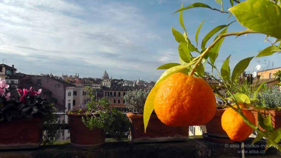 rome skyline, campo di' fiori, italy, travel, travelogue, travel photography, ailsa prideaux-mooney, mediterranean garden