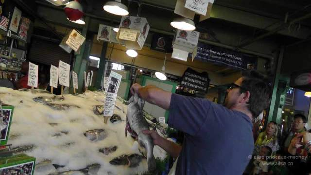 pike place market, seattle, flying fish, throwing fish, fish market, travel, travelogue, ailsa prideaux-mooney, photography