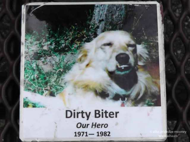 dirty biter, la conner, skagit valley, washington state, travel, travelogue, ailsa prideaux-mooney