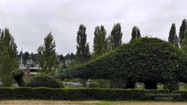 fremont dinosaurs, topiary dinosaurs, seattle, travel, travelogue, tourism, ailsa prideaux-mooney