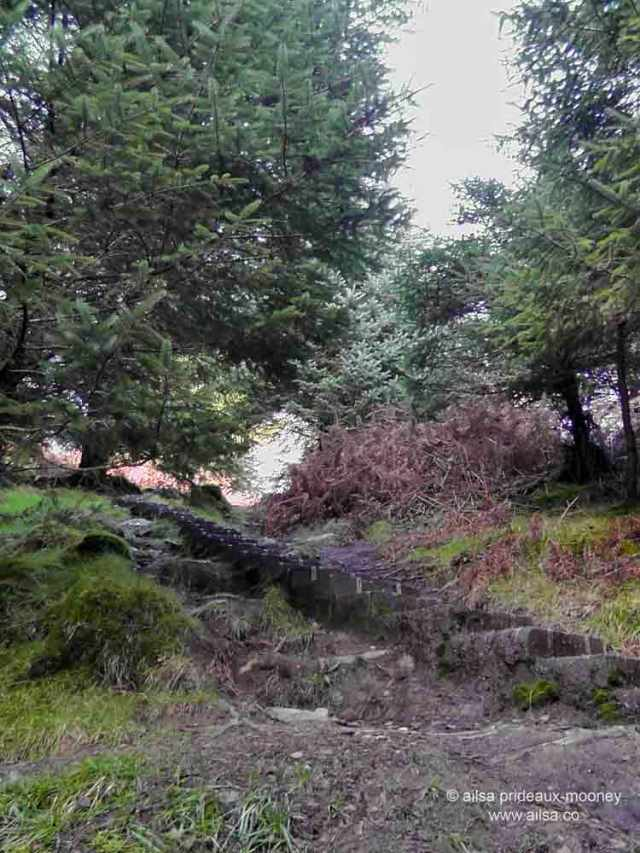 glendalough, spinc, spinc trail. blue trail, hiking, wicklow mountains, wicklow national park, wicklow, ireland, travel, travelogue, ailsa prideaux-mooney, 600 steps