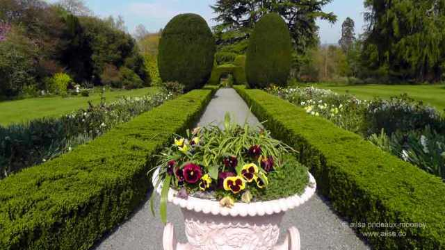 altamont house, altamont gardens, carlow, ireland, irish gardens, travel, travelogue, ailsa prideaux-mooney, irish houses