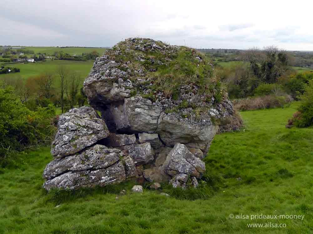 Druid Central
