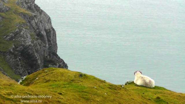 cliffs of sliabh liag, sliabh league, donegal, ireland, travel, travelogue, ailsa prideaux-mooney